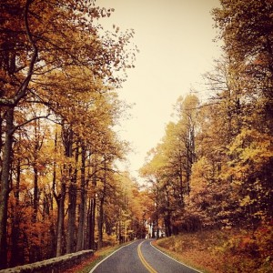 What my Virginia commute looks like in the Fall.